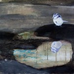 Eva Wilms - Natur - Spegling